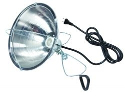 "10.5"" Brooder Reflector Lamp"